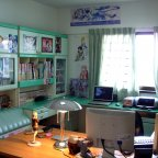 A look into an otaku's room